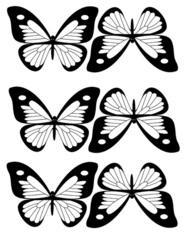 Balancing_butterfly.jpg